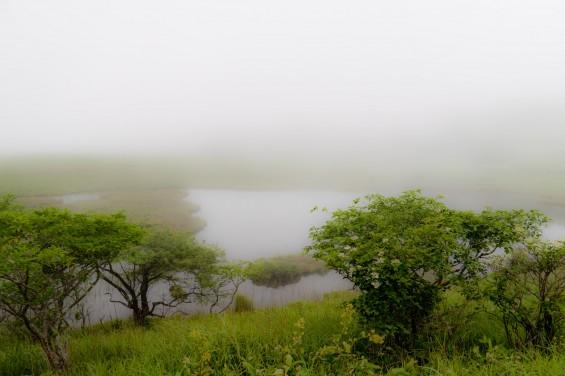 木道から撮った八島ヶ原湿原
