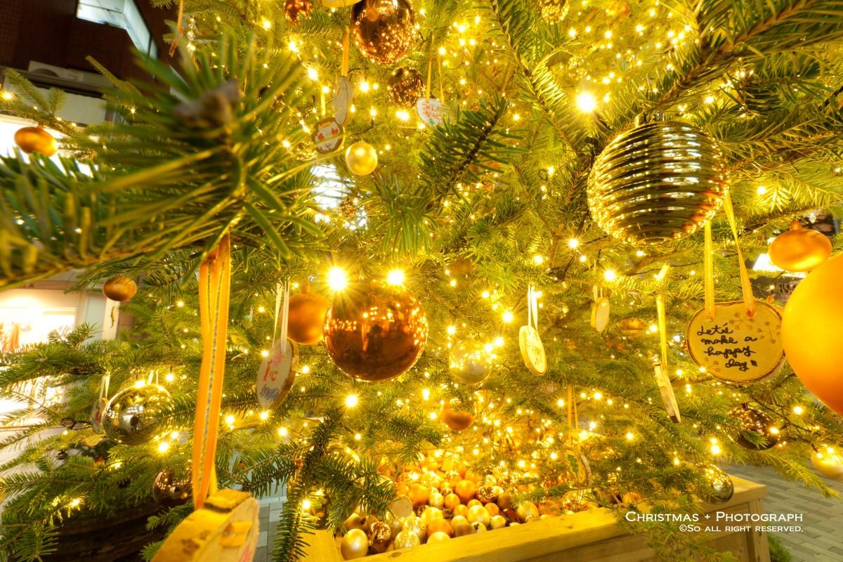 自由が丘のクリスマスツリーのアップ