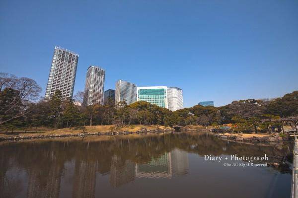 浜離宮恩賜庭園からコンラッド東京方面