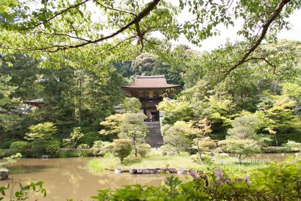 京都&奈良旅行 円成寺